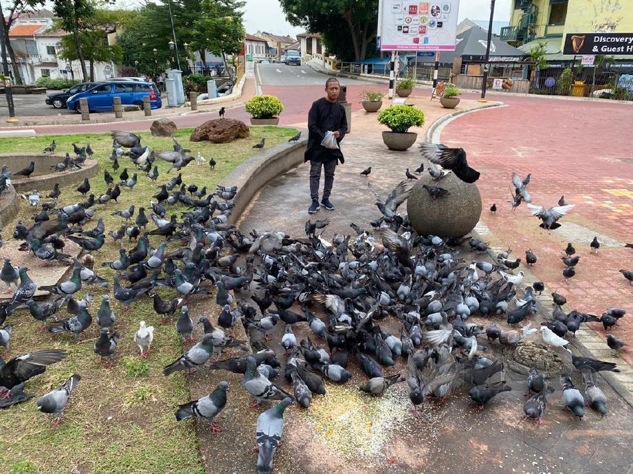 BAHARUDIN memberi makan burung merpati setiap hari di Little India di Bandar Hilir. FOTO Nazri Abu Bakar