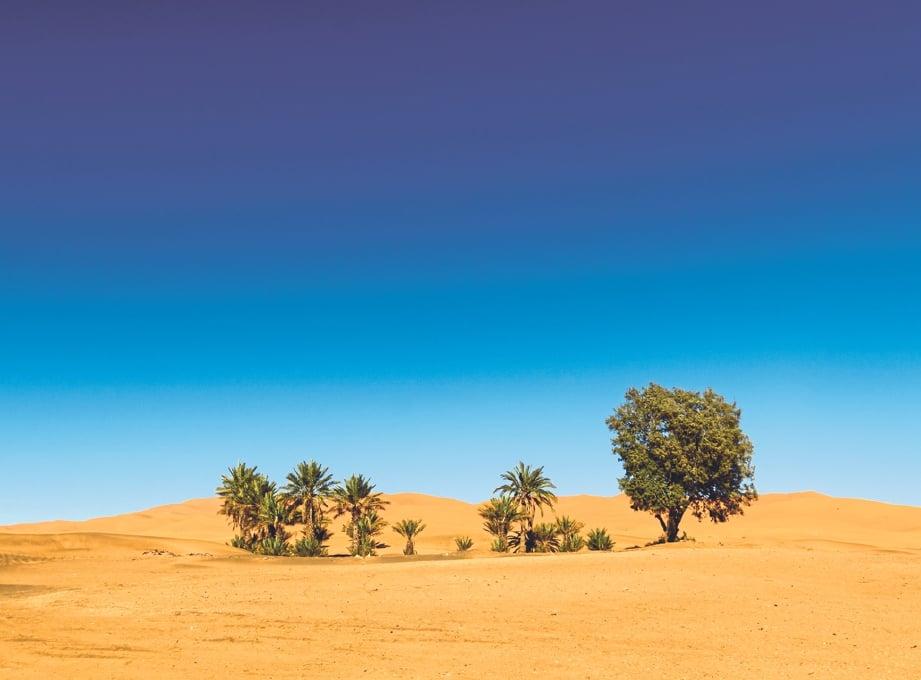 KAWASAN gurun yang kering dan gersang bertukar menghijau dan sungai yang mengalir adalah panduan tentang situasi akhir zaman yang kian hampir.