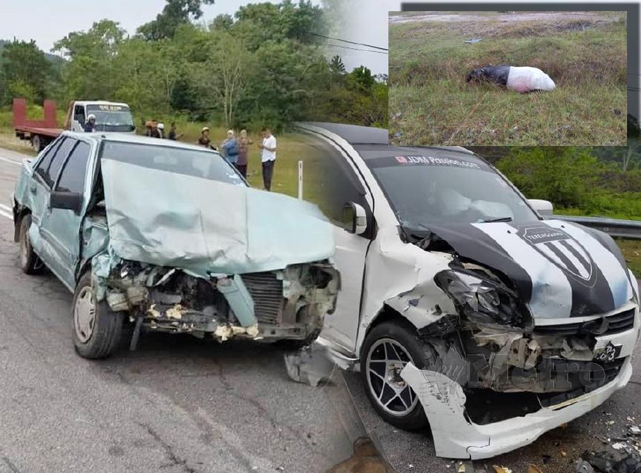 KEDUA-DUA kereta Proton Iswara dan Myvi yang terbabit dalam kemalangan selepas melanggar seekor tapir (gambar kecil) di Dungun, pagi ini. FOTO Rosli Ilham