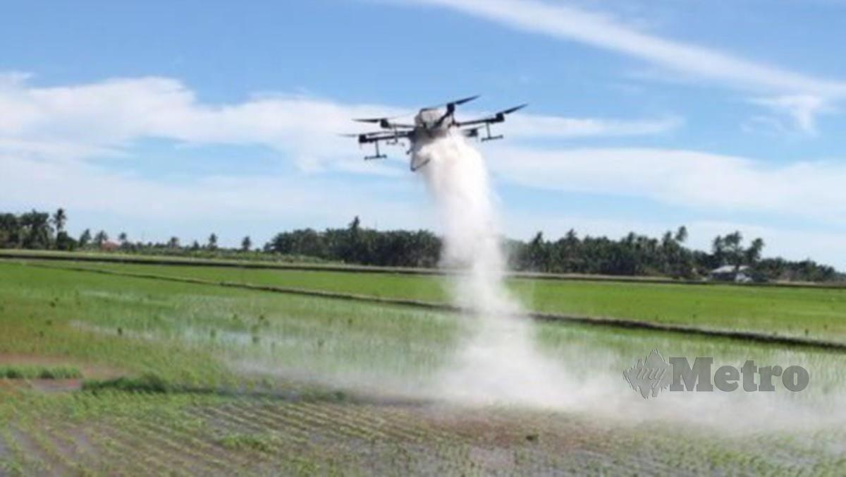 PENGGUNAAN teknologi dron T20 di sawah mampu mempercepatkan proses membaja dan kawalan makhluk perosak serta penyakit oleh petani.