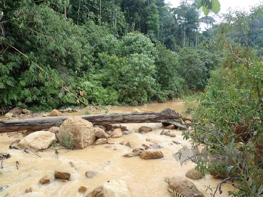 SUNGAI Timah menjadi keroh disebabkan kegiatan melombong emas secara haram dalam Hutan Simpan Ulu Jelai. FOTO Mohd Rafi Mamat