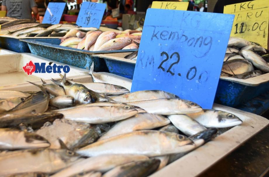 Image result for Foto harga ikan kembung melambung tinggi