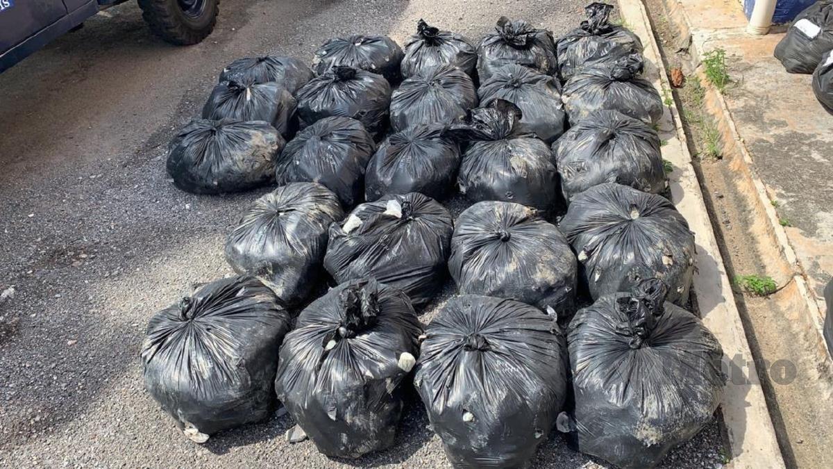 SEBANYAK 1,050 kilogram (kg) daun ketum bernilai RM31,500 dirampas Pasukan Gerakan Am (PGA) Briged Utara. FOTO Ihsan PGA