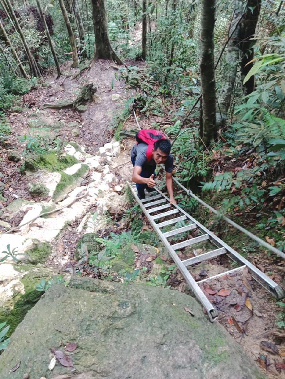 PEMANDANGAN indah hutan lipur Gunung Ledang.