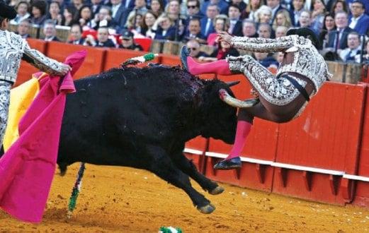 PEMBANTU matador, Antonio Jimenez tercampak selepas ditanduk lawannya di gelanggang Real Maestranza di Seville.