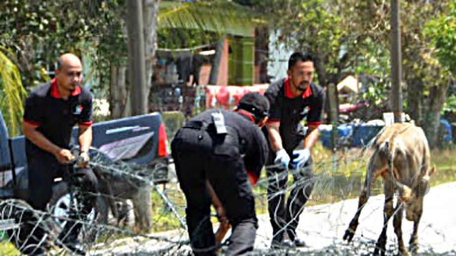 ANGGOTA penguat kuasa MDS melakukan operasi Operasi Bersepadu Haiwan Merayau di sekitar Setiu. FOTO Nurul Fatihah Sulaini