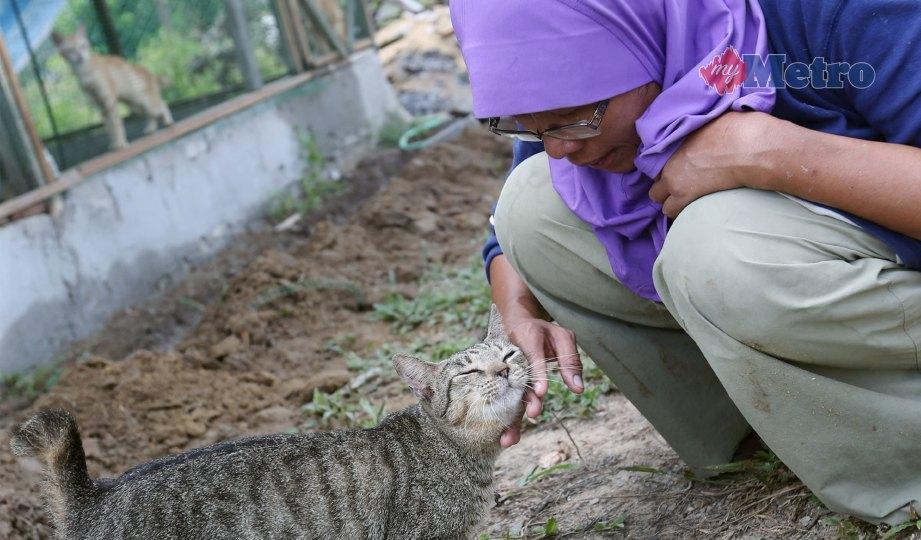 NOR Hayati bercakap dengan kucing peliharaannya. FOTO Halimaton Saadiah Sulaiman
