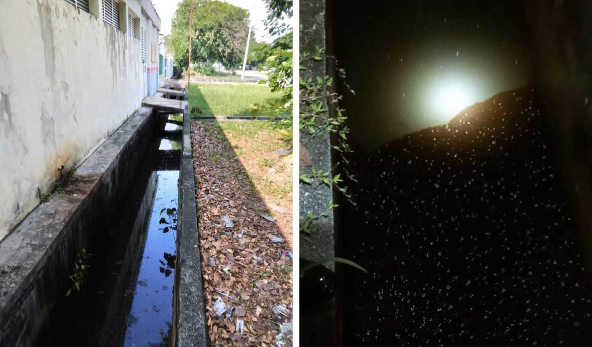 KEADAAN parit yang bergelumang dengan minyak akibat perbuatan sebuah kilang kitar semula minyak terpakai di Bukit Minyak yang melakukan pencemaran. FOTO Ihsan JAS Pulau Pinang