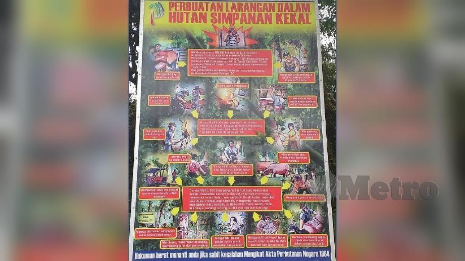 NOTIS yang dikeluarkan Jabatan Perhutanan Negeri Pahang. FOTO Mohd Rafi Mamat.