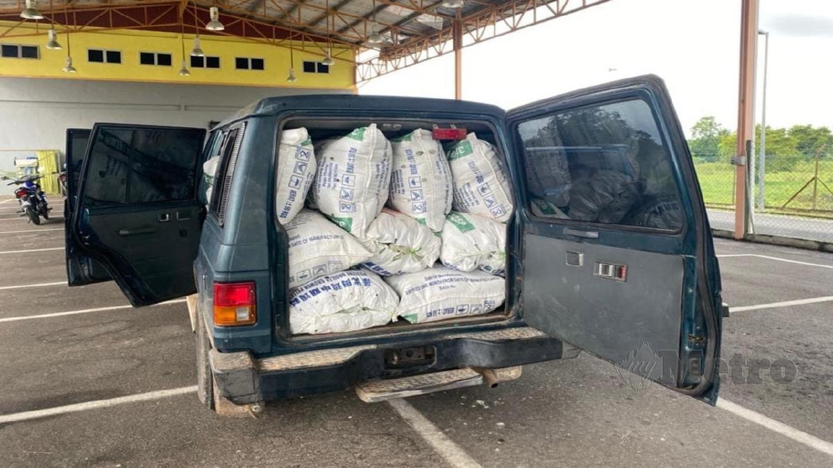 KETUM yang ditemui dalam sebuah kenderaan pacuan empat roda, di sebuah kawasan kuari di Padang Besar. FOTO Ihsan Aksem Chuping.