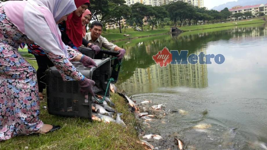 HASLIZA (dua dari kiri) bersama wakil penaja melepaskan spesies ikan patin dan pacu di Taman Tasik Danau Kota, Setapak, Kuala Lumpur, hari ini. FOTO ihsan DBKL