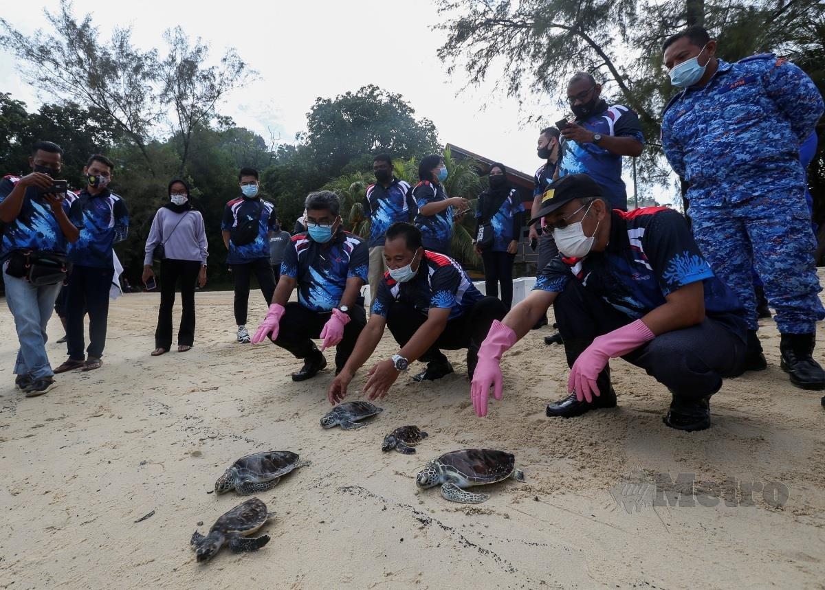 Bakri (kanan) ditemani Pengarah Perikanan Negeri Sembilan, Halimi Abu Hanip (dua dari kanan) melepaskan penyu karah dan agar pada program pemuliharaan biodiversiti marin Port Dickson di pantai Tanjung Biru. FOTO AZRUL EDHAM MOHD AMINUDDIN