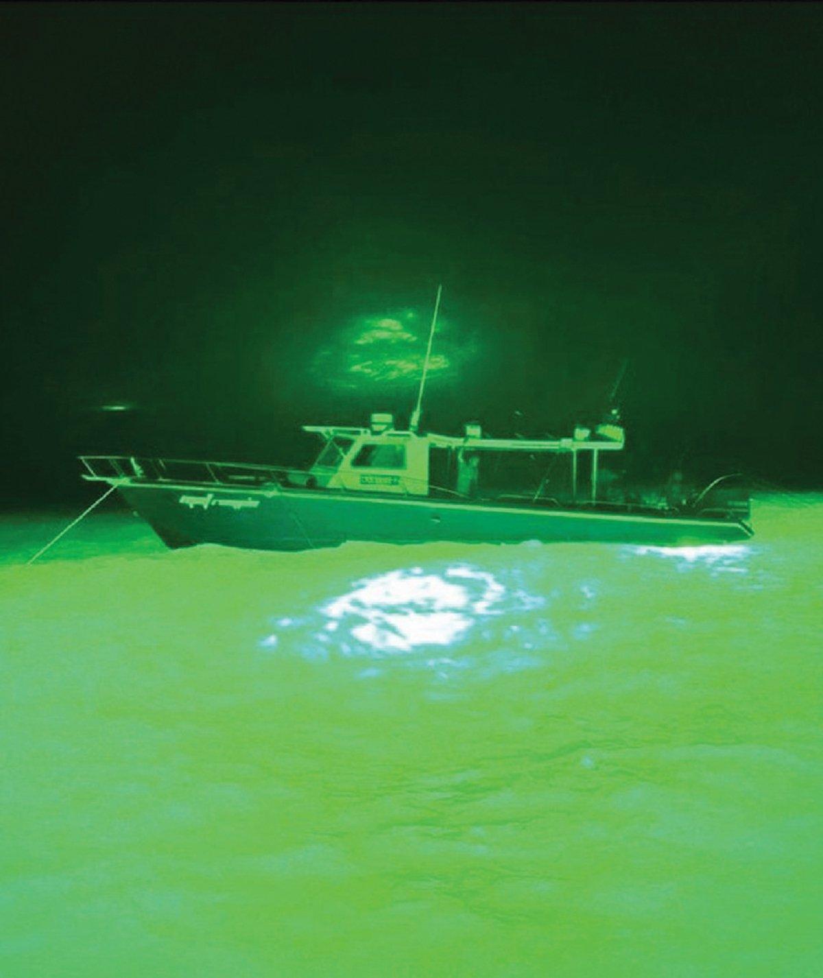 BOT lampu hijau terang penting bagi mengumpan kumpulan sotong.
