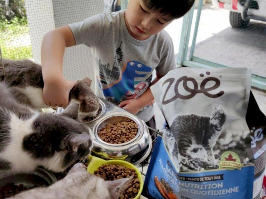 PELAJAR juga diajar bagaimana menjaga haiwan kesayangan mereka.