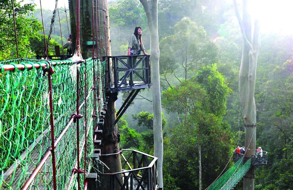 LEMBAH Danum Hutan Simpan Kelas 1 kaya dengan pelbagai flora dan fauna.