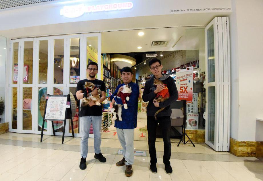 C-A-T Playground yang terletak di pusat beli-belah Sunway Putra Mall menawarkan pusat sehenti permainan kucing.
