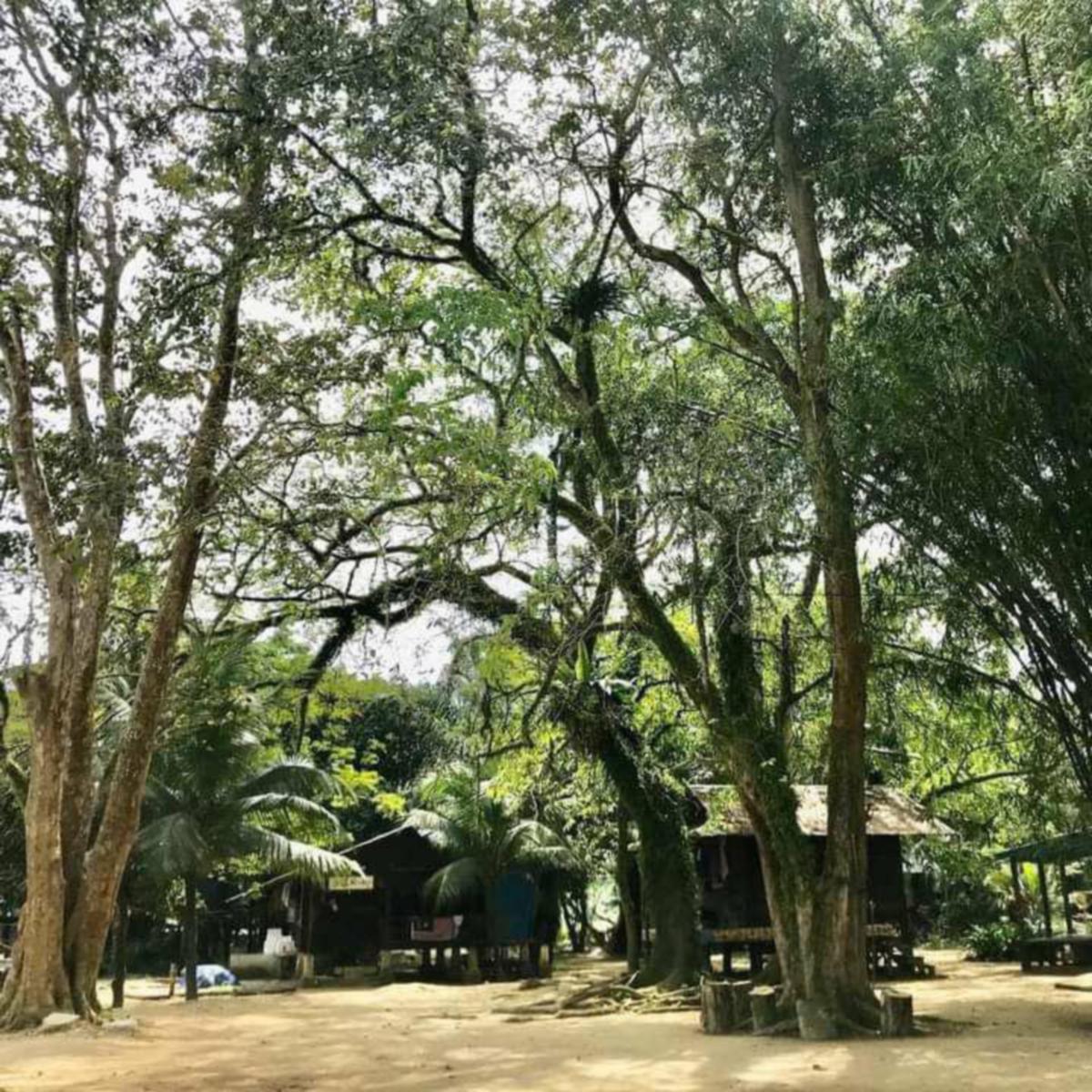 PERKAMPUNGAN Warisan Budaya Pulau Misa Melayu cukup unik dengan senario peradaban Melayu lama.