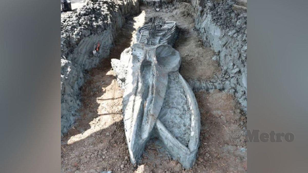 Fosil ikan paus berusia antara 3,000 hingga 5,000 tahun ditemukan di Thailand. FOTO Agensi