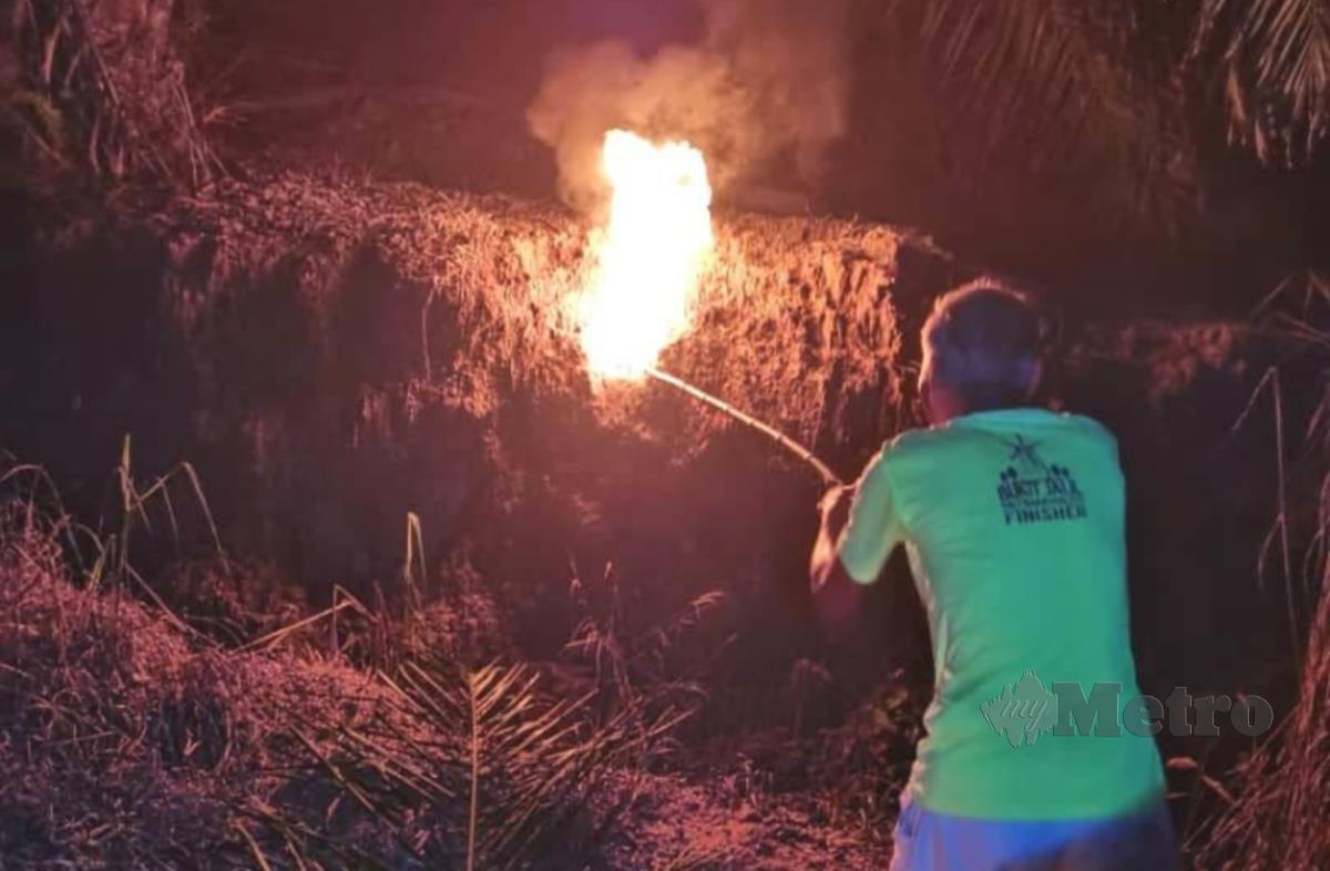 Uncle Yap membakar sarang tebuan di ladang kelapa sawit yang merupakan laluan pendaki ke Bukit Taisho.