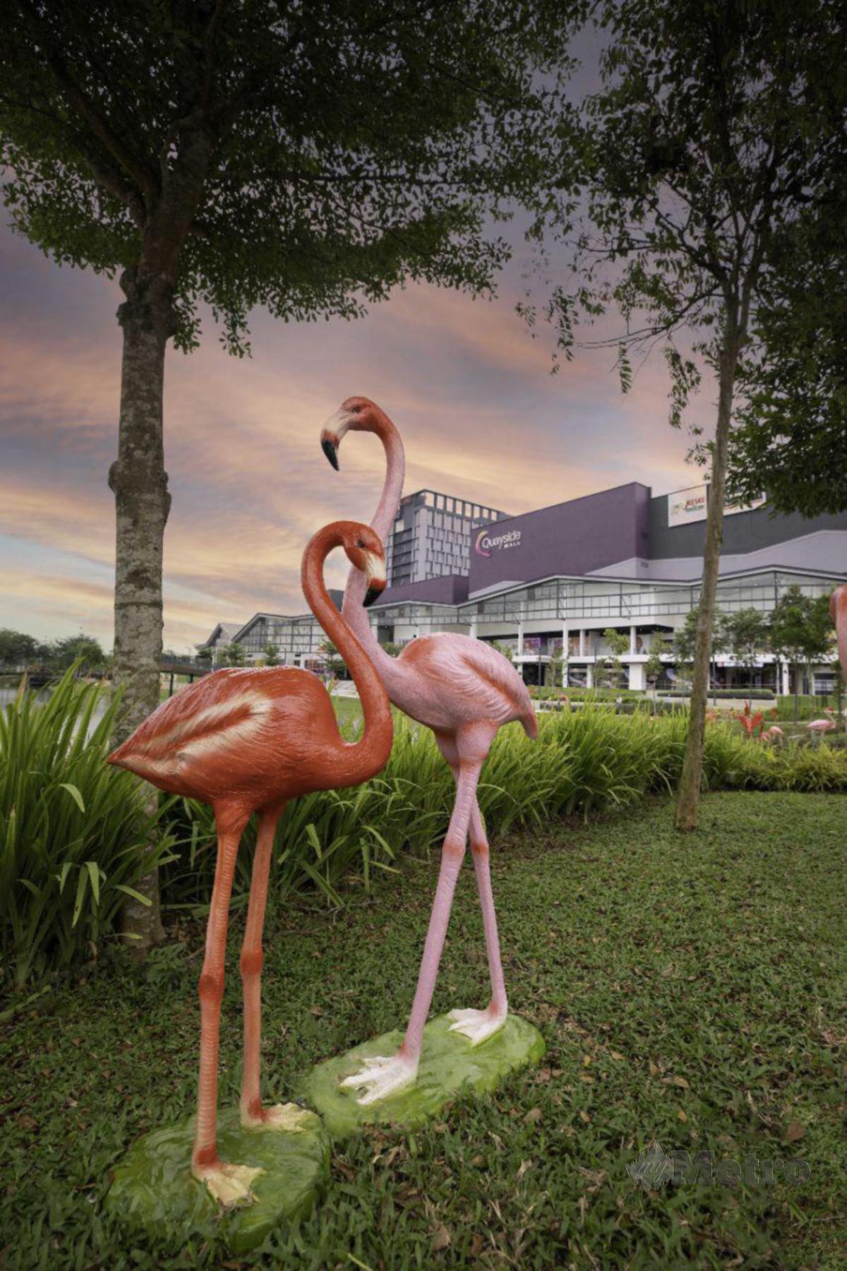 DUA flamingo menjadi maskot.