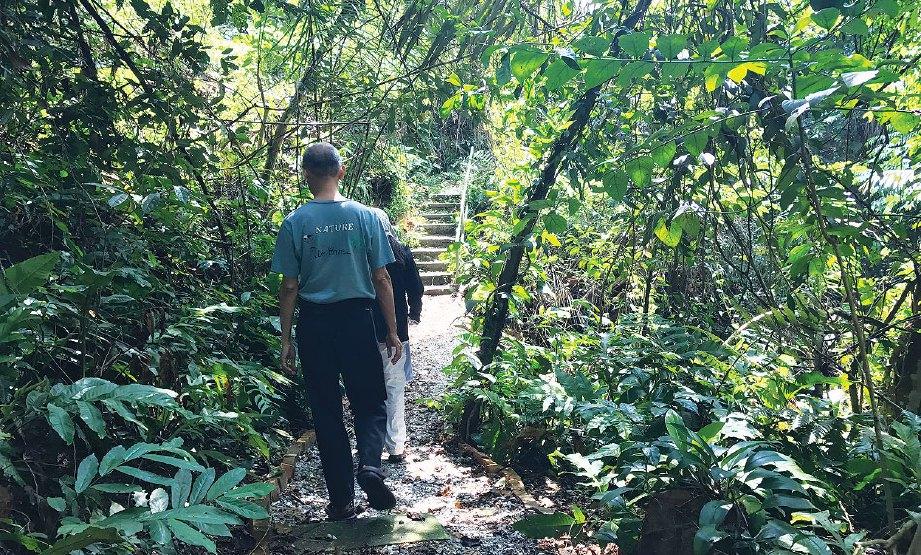 LALUAN denai turut dibuka untuk orang awam untuk tujuan pembelajaran dan menghayati keindahan alam di hutan urban Bukit Persekutuan.