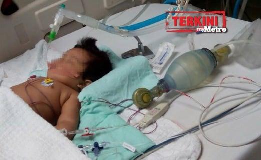 MANGSA menerima rawatan di hospital.