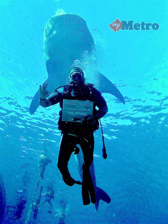 SHEIKH Lokman Shazly merakam kenangan bersama jerung paus di Oslob di perairan Cebu, Filipina. FOTO Ihsan pembaca