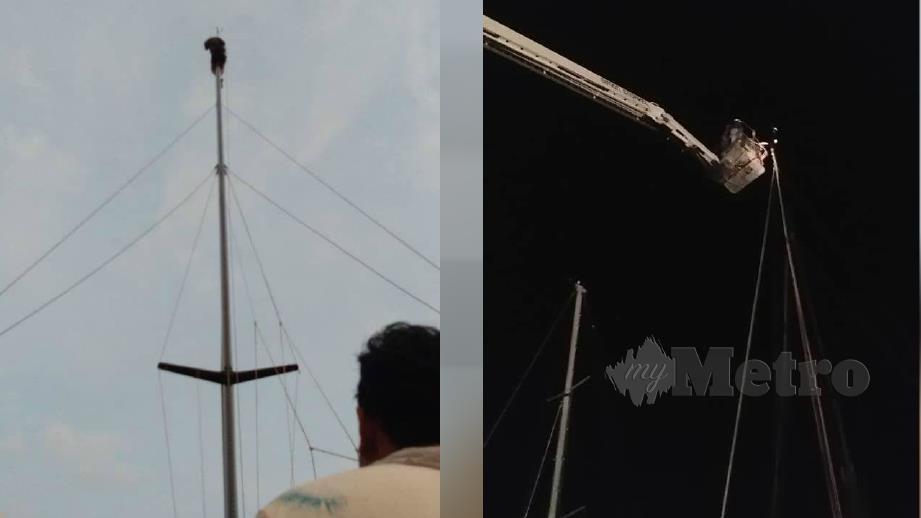 LELAKI warga Sweden yang tersangkut pada tiang layar kapal miliknya di Jeti Marina Island, Lumut, dibawa turun dengan jentera skylift milik bomba, malam ini (gambar kanan). FOTO ihsan bomba
