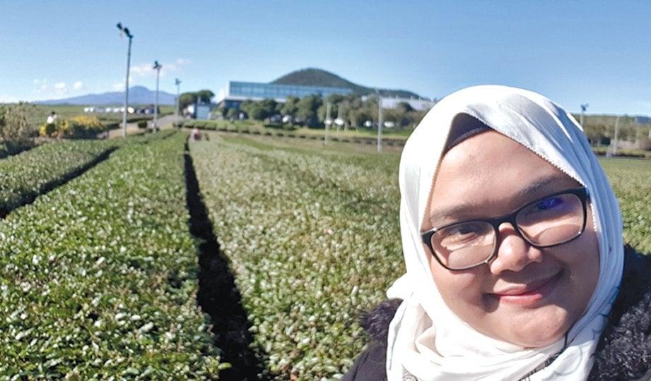 PENULIS di ladang teh hijau organik.