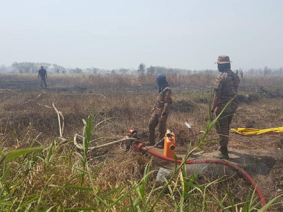 ANGGOTA bomba melakukan operasi pemadaman Hutan Simpan Kuala Langat Selatan yang terbakar. FOTO Ihsan Bomba.