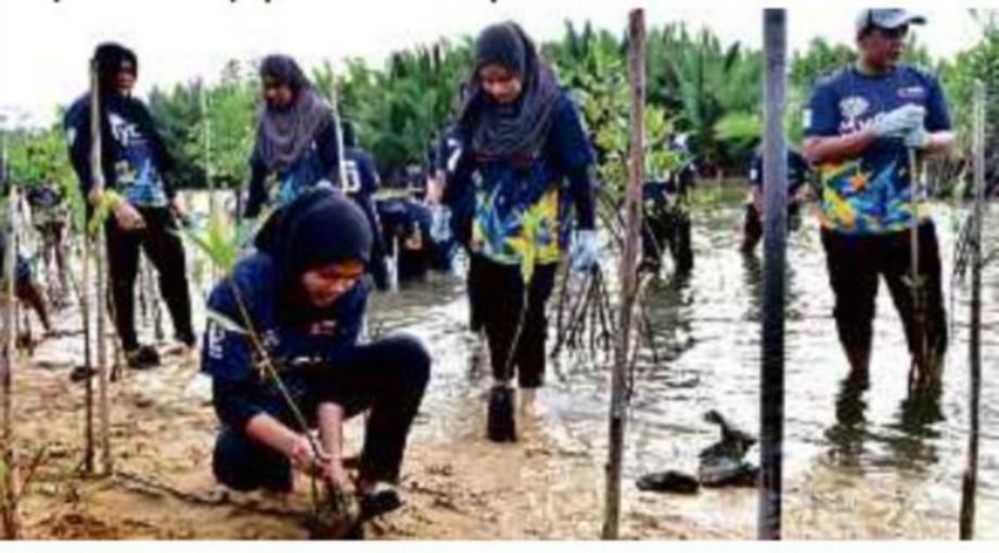 AKTIVITI penanaman pokok bakau memberi pengalaman baharu kepada peserta.